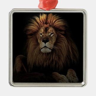Der goldene stolze Löwe Afrika Quadratisches Silberfarbenes Ornament