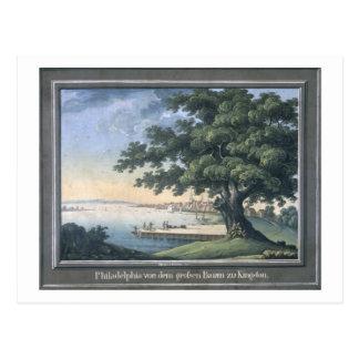 Der große Baum von Kingston mit Blick auf Philadel Postkarte