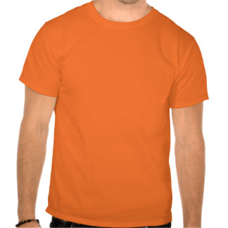 Der grundlegende orange T - Shirt der Männer