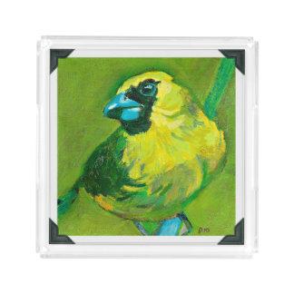 Der grüne Vogel mit dem blauen Schnabel Acryl Tablett