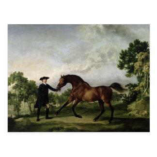 """Der Herzog von Ancasters Bucht Stallion """"freier Postkarte"""