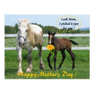 Der Horsy Tag der Mutter Postkarte