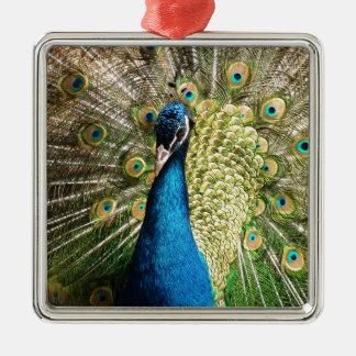Der hübsche Pfau Silbernes Ornament
