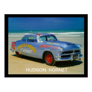 Der Hudson-Hornisse Postkarte