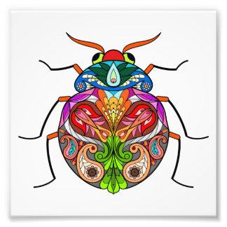 Der Käfer Fotodruck