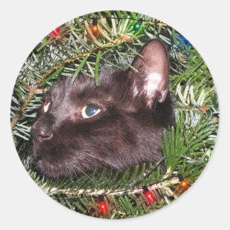Der Kater im Weihnachtsbaum - Aufkleber