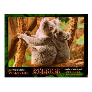 DER KOALA (Bär) wird gefährdet, dieses las:  - Postkarte