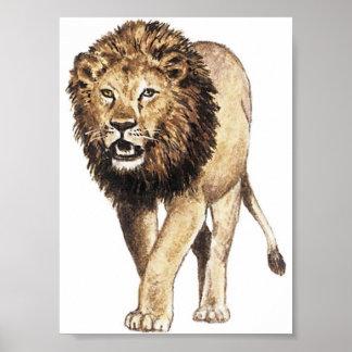 Der König des Dschungels Plakat