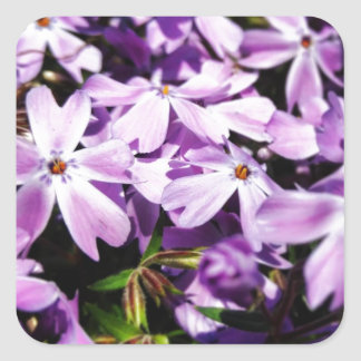 Der lila Blumen-Flecken Quadratischer Aufkleber