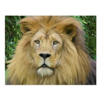 Der Löwe Postkarte