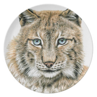 Der Luchs - The Lynx Teller