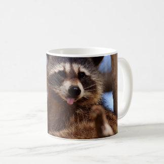 Der lustige Waschbär, der es haftet, ist Zunge Kaffeetasse