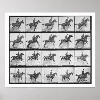 Der Mann und Pferd, die einen Zaun springen, überz Poster