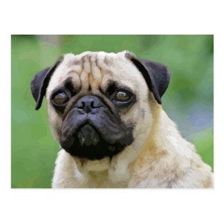 Der Mops-Hund Postkarte