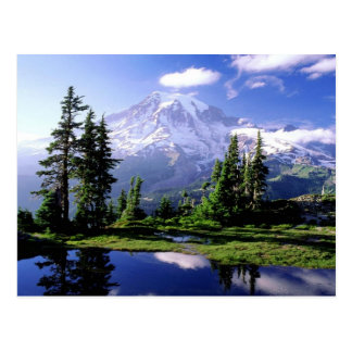 Der Mount Rainier Washington Postkarte