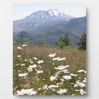 Der Mount Saint Helens Fotoplatte