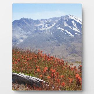 Der Mount- Saint HelensWildblumen Fotoplatte