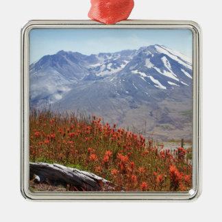 Der Mount- Saint HelensWildblumen Quadratisches Silberfarbenes Ornament