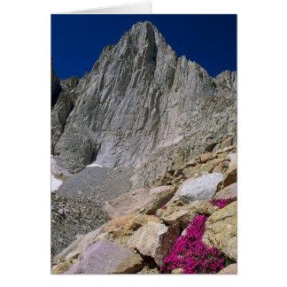 Der Mount Whitney, Kalifornien Karte