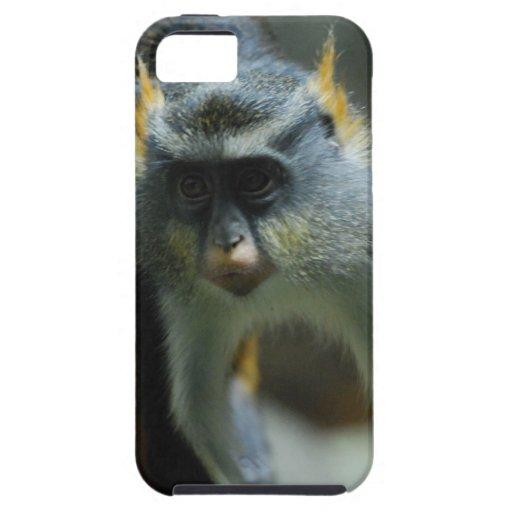 Der niedliche Affe des Wolfs iPhone 5 Etui