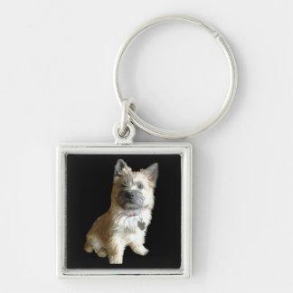 Der niedlichste Cairn-Terrier überhaupt!  Niedlich Schlüsselanhänger