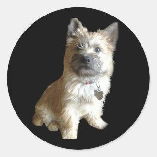 Der niedlichste Cairn-Terrier überhaupt!  Runder Aufkleber