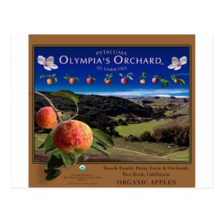 Der Obstgarten der Olympia Postkarte