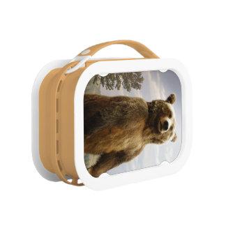 Der perfekte Lunchbox