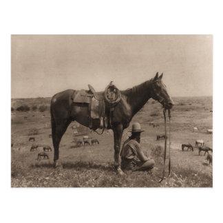 Der PferdeWrangler 1910 Postkarte