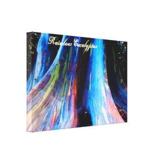 Der Regenbogen-Eukalyptus-Baum von Hawaii Galerie Faltleinwand