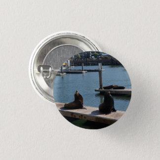 Der San Francisco Pier-39 Knopf Seelöwe-#3 Pinback Runder Button 2,5 Cm