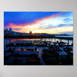 Der San Francisco Pier-39 Plakat Seelöwe-#4-1