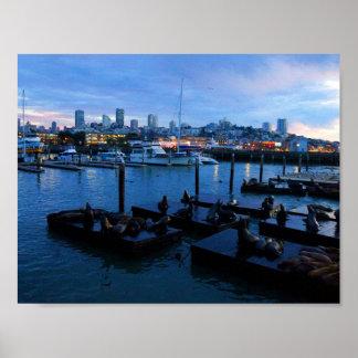 Der San Francisco Pier-39 Plakat Seelöwe-#7-1