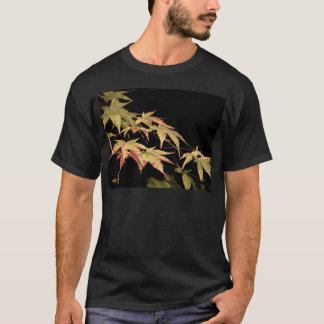 Der schwarze T - Shirt Acer-Männer