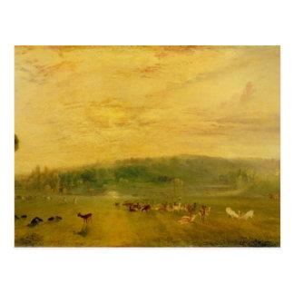 Der See, Petworth: Sonnenuntergang, kämpfende Postkarte
