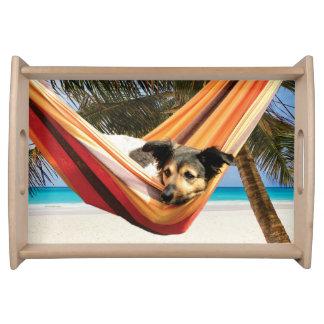 Der Strand-Zeit des Hundes Tablett