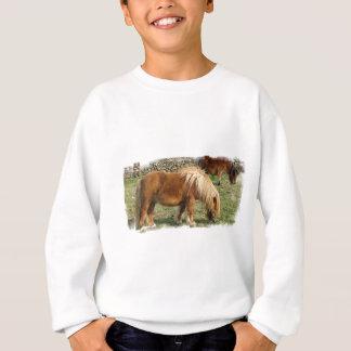 Der Sweatsihrt der Shaggy die Sweatshirt