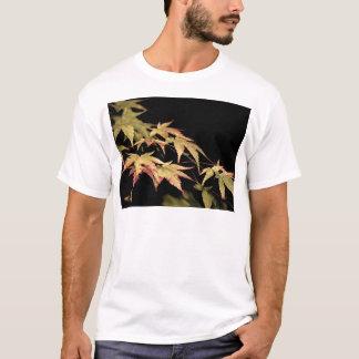 Der T - Shirt Acer-Männer
