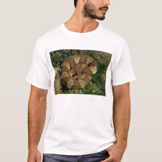 der T - Shirt der breit-mit einem Band versehenen