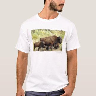 Der T - Shirt der durchstreifenden Büffel-Männer