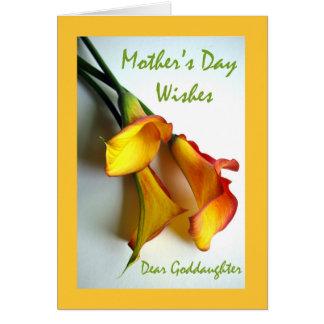 Der Tag der Mutter für Patenttochter, Calla-Lilien Karte