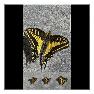Der Tanz des Schmetterlinges Poster