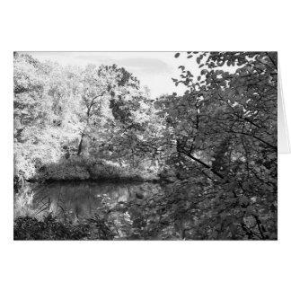 Der Teich am Central Park Karte