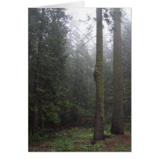 Der Wald Karte
