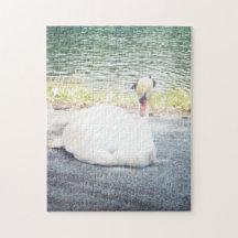 Der weiße Schwan Foto Puzzle