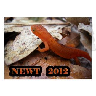 Der WIRKLICHE Newt - 2012 Karte