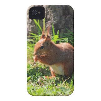 Des roten niedlichen mutiger Kasten iPhone 4 Case-Mate Hüllen