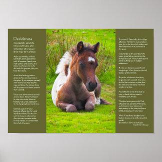 Desiderata-Gedicht - Dartmoor Pony-Fohlen Poster