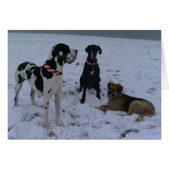 Deutsche Dogge, Great Dane,Hunde,Weihnachten Karte