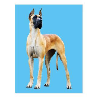 Deutsche Dogge Postkarte